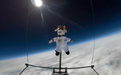 Could Staffordshire Farm be the first to send a cow in to space?