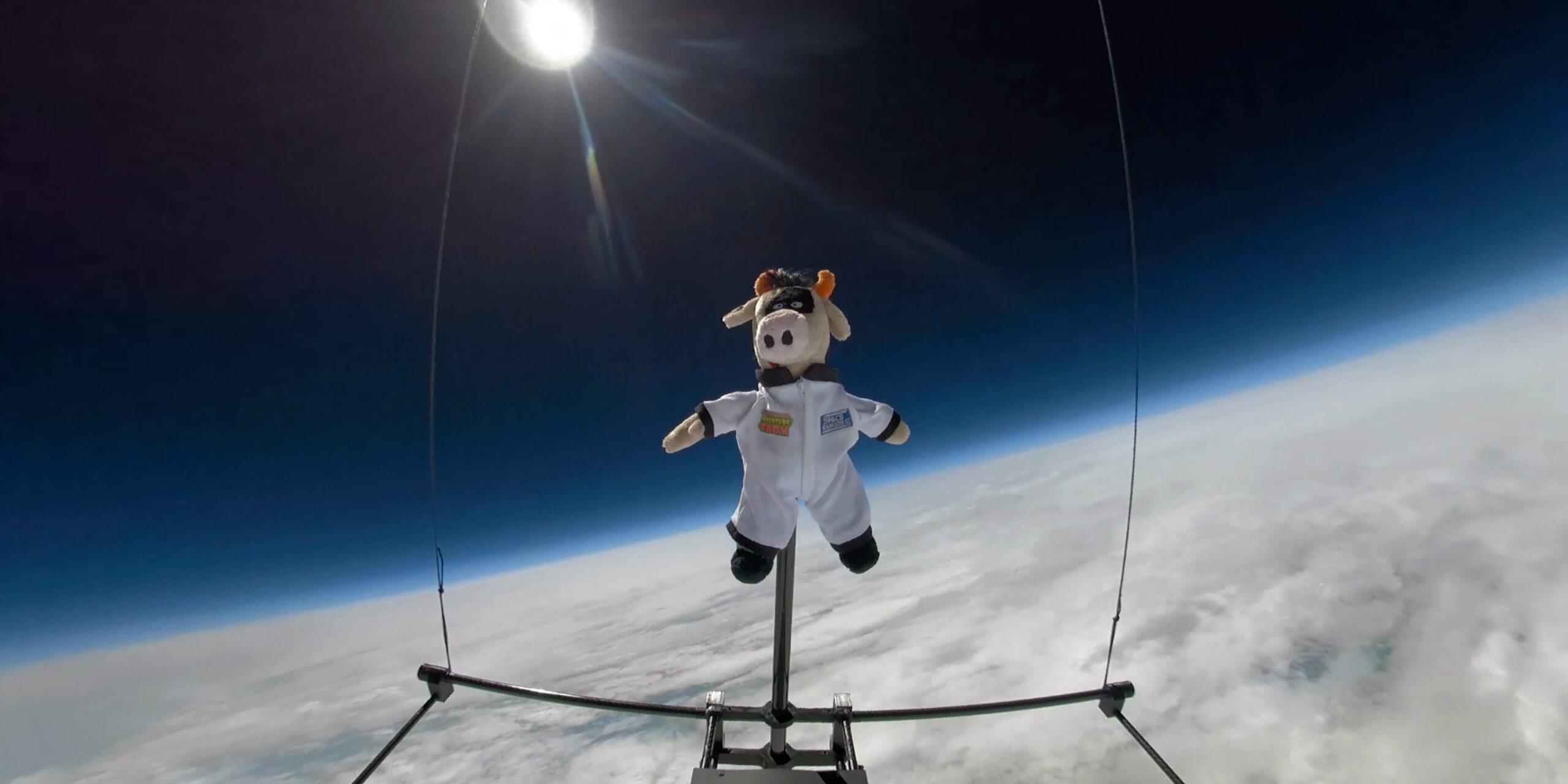Crumpet the Cow in space