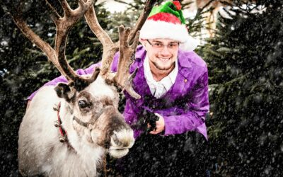 Family festive fun unveiled with new magical Christmas Cracker experience at Staffordshire farm attraction!