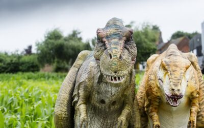 Dinosaur fun as family farm attraction opens to offer safe outdoor play