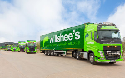 New commercial manager appointed at Willshee's